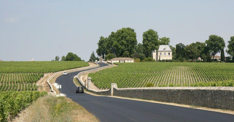 Vignoble dans la Région de Bordeaux, Bordeaux